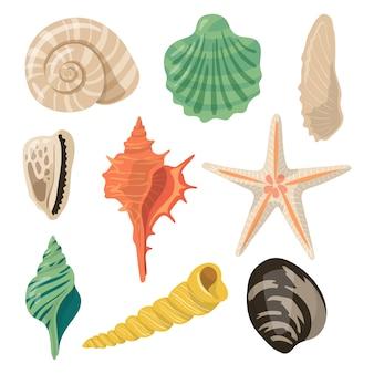 Schelpen van zee in zand. aquatische vectorpictogrammen in beeldverhaalstijl.