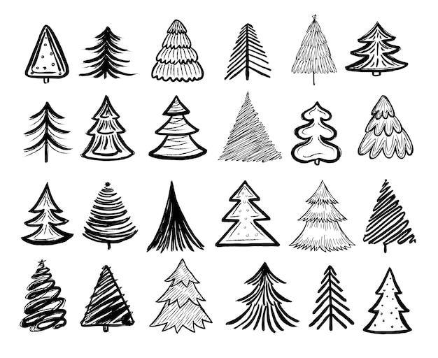 Schets fir tree