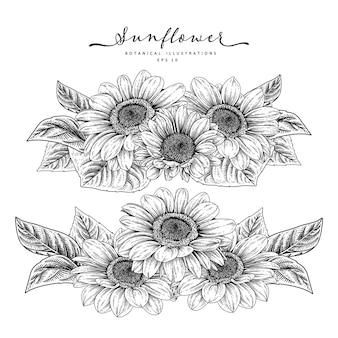 Schets floral decoratieve set.