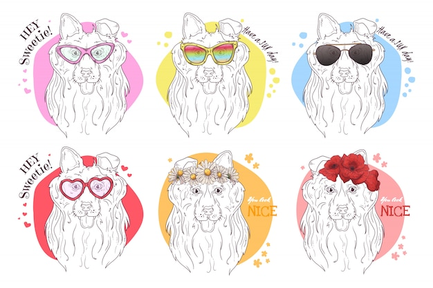 Schets portretten van collie-honden met accessoires