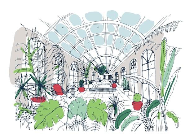 Schets uit de vrije hand van het interieur van de kas vol met tropische planten.