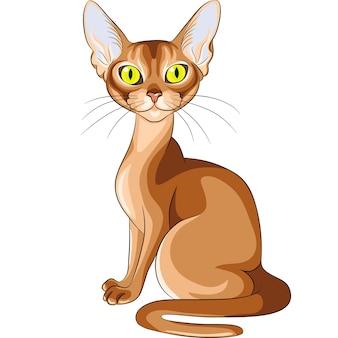 Schets van het rode abessijnse kattenras met knipperende amberkleurige ogen