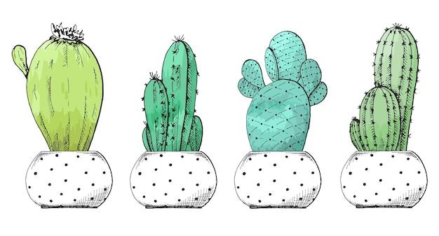 Schets van vetplanten in potten. gestileerde aquarel. vector illustratie.