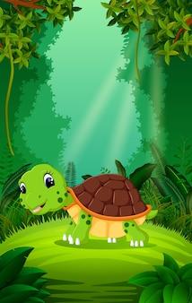 Schildpad in het heldere en groene bos