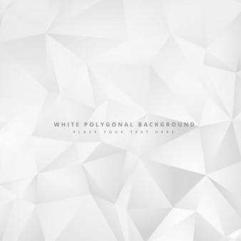 Schone minimale witte geometrische achtergrond ontwerp