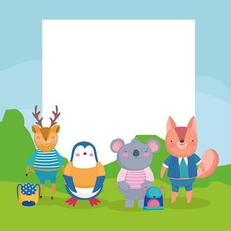 School voor kleine dieren