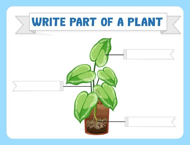Schrijf delen van een plantenwerkblad voor kinderen