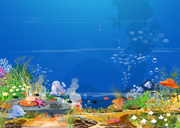 Sea dream world - de magie van het bovennatuurlijke.