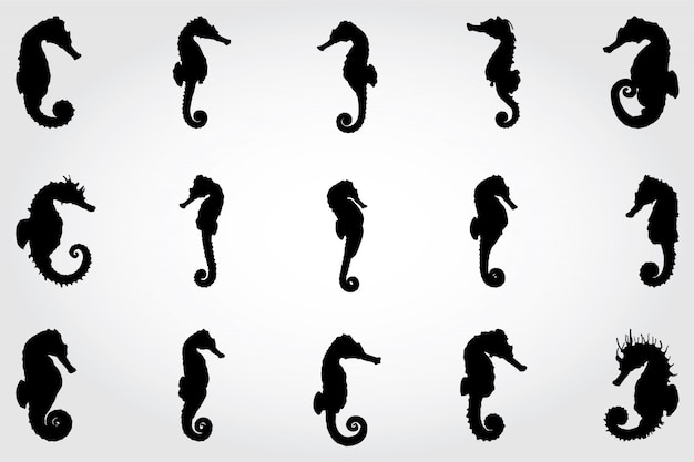 Seahorse silhouetten