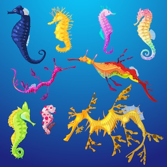 Seahorse zeevis karakter of cartoon zeepaardje onderzeese in tropische dieren in het wild illustratie set van exotische zeepaardje in aquarium of oceaan op achtergrond