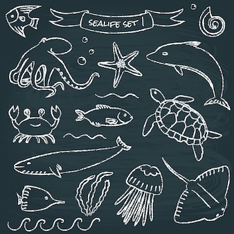 Sealife schoolbord set