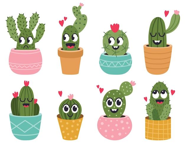 Selectie van cactusplanten in potten