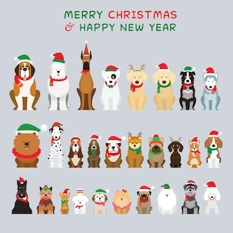 Selectie van honden in kerstkostuums