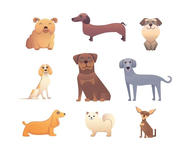 Selectie van hondenrassen