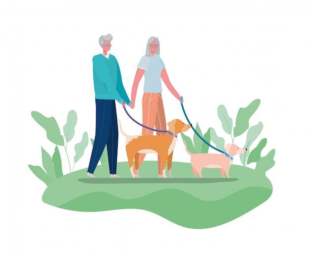 Senior vrouw en man cartoons met honden bij parkontwerp, activiteitenthema