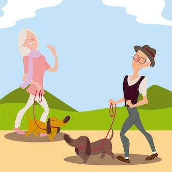 Senioren actief, oude man en oudere vrouw wandelen met honden illustratie