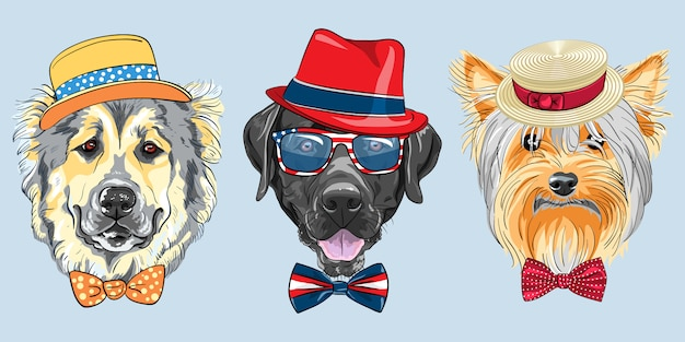 Set 3 cartoon hipster honden