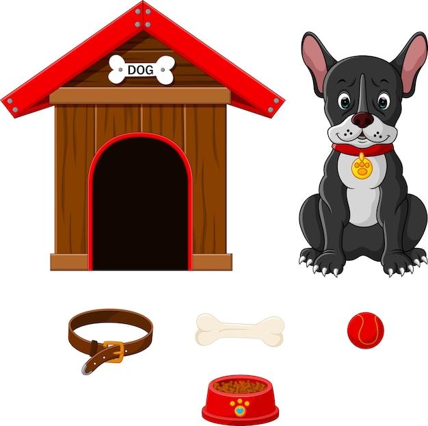 Set accessoires voor honden