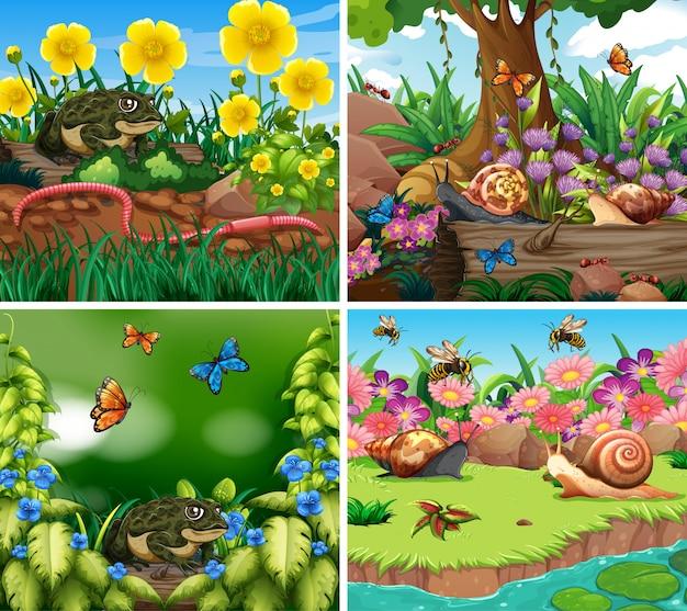 Set achtergrond scène met natuur thema