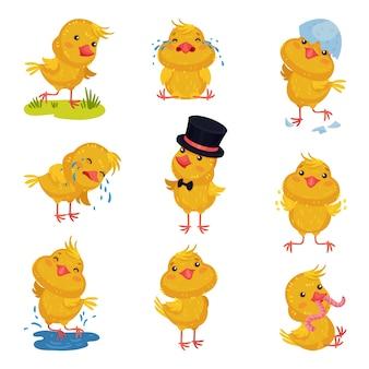 Set afbeeldingen van kleine kippen in verschillende situaties