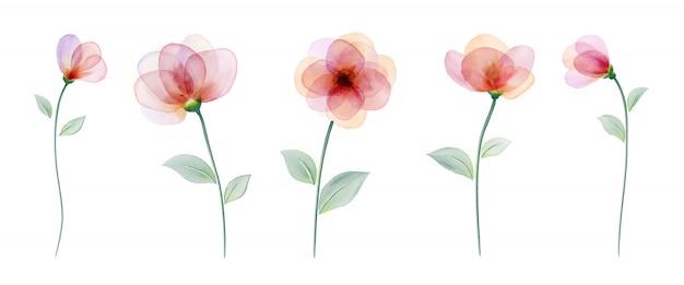 Set aquarel hand beschilderd met kleurrijke bloem