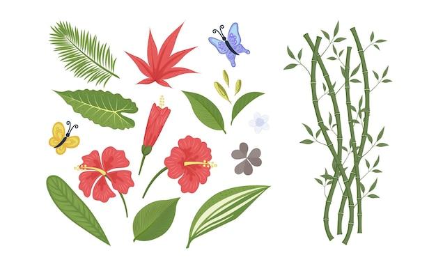 Set bladeren, bamboe, hibiscus bloemen, vlinders in een vlakke stijl. vectorillustratie eps10.