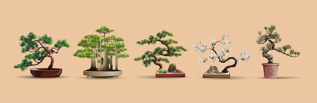 Set bonsai japanse bomen gekweekt in containers. mooie realistische boom. boom in bonsaistijl. bonsaiboom op de rode doos. decoratieve kleine boomillustratie. natuur kunst.