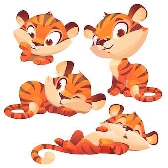 Set cartoon baby tijger schattig dierenwelp karakter
