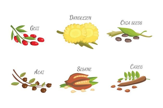Set cartoon superfoods. vers fruit schets achtergrond. illustratie voor je.