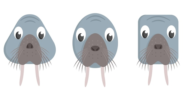 Set cartoon walrussen. verschillende vormen van dierengezichten.