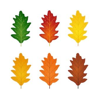 Set eikenbladeren illustratie set met herfstkleuren herfst seizoen ontwerpelement