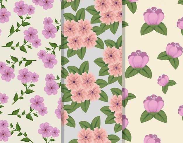 Set floral stijl met bloemblaadjes en bladeren patronen