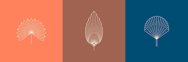 Set gedroogde palmbladeren in een trendy minimale lineaire stijl. vector tropisch blad boho embleem. bloemenillustratie voor het maken van logo, patroon, t-shirtafdrukken, tatoeage, post op sociale media en verhalen