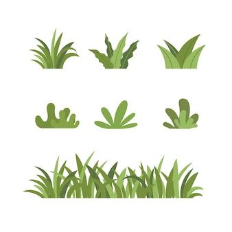 Set grassen struiken groen botanische planten floral collectie illustratie