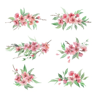 Set hand getrokken aquarel bloemstukken. kersenbloesem