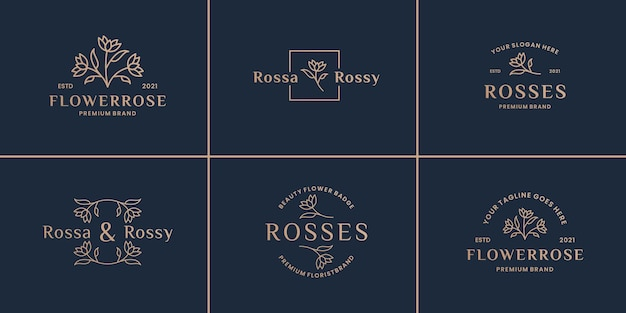 Set hand getrokken gebladerte roze bloem, brief, bloemen, frame logo ontwerp