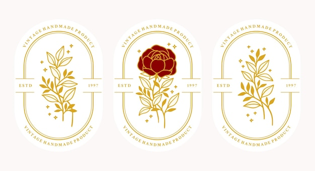Set hand getrokken vintage gouden botanische roze bloem