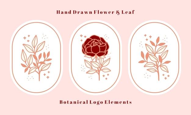 Set hand getrokken vintage roze botanische pioenroos bloem en blad tak elementen