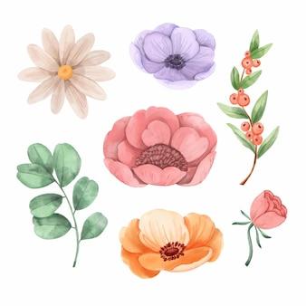 Set handgeschilderde bloemen met waterverf