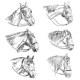 Set handgetekende paarden