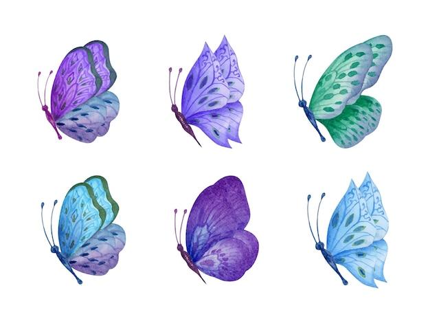 Set handgetekende prachtige aquarel vlinder set