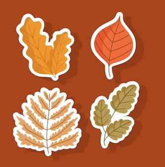 Set herfstbladeren