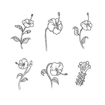 Set hibiscus schetsontwerp voor natuurornament