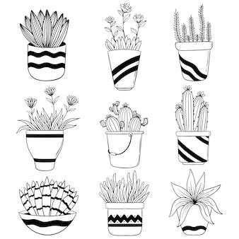 Set huis bloemen in pot voor lente seizoen en met de hand getekende of schetsmatige stijl