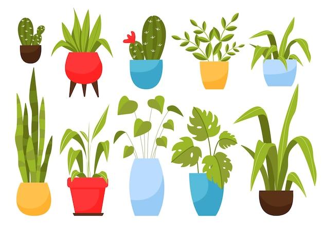 Set huisplanten in potten. illustratie in cartoon-stijl.