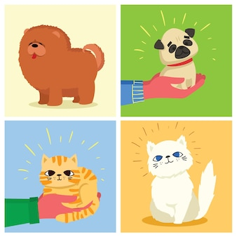 Set kaarten met katten en honden in de vlakke stijl