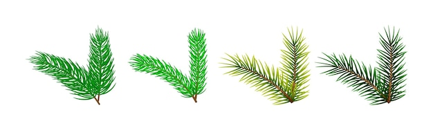 Set kerstboom takken sjabloon