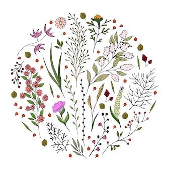 Set met cartoon twijgen en bloemen
