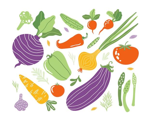 Set met hand getrokken kleurrijke doodle groenten in trendy biologische stijl. groenten plat pictogrammen: komkommer, wortel, ui, tomaat, rode biet, broccoli, peper. vegetarisch gezond eten. farm producten