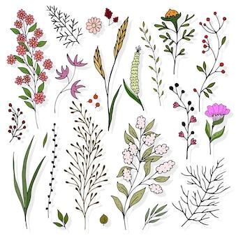 Set met takjes en bloemen